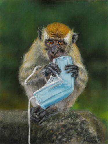 Macaque Nibbles 24x32 Pastels